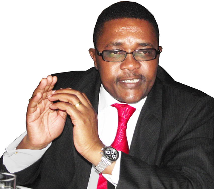 Image result for mzembi