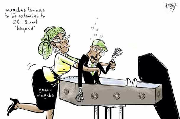 Image result for grace mugabe cartoons